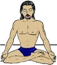 yoga postures  half lotus pose ardha padmasana or ardha